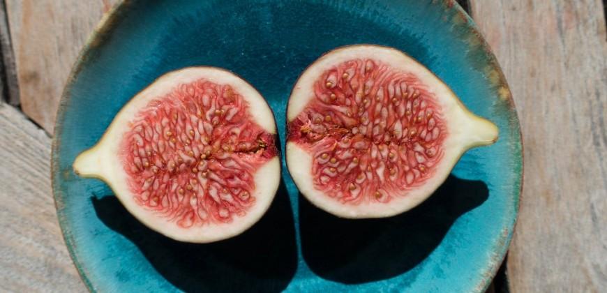 7 zeytin 1 incir diyeti